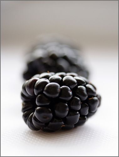 Blackberries are often found on the palate of a merlot wine ... The Bein Merlot Reserve is such a wine :)