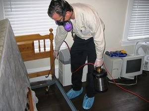 Quality And Consistent Services Offered By Bed Bug Exterminators