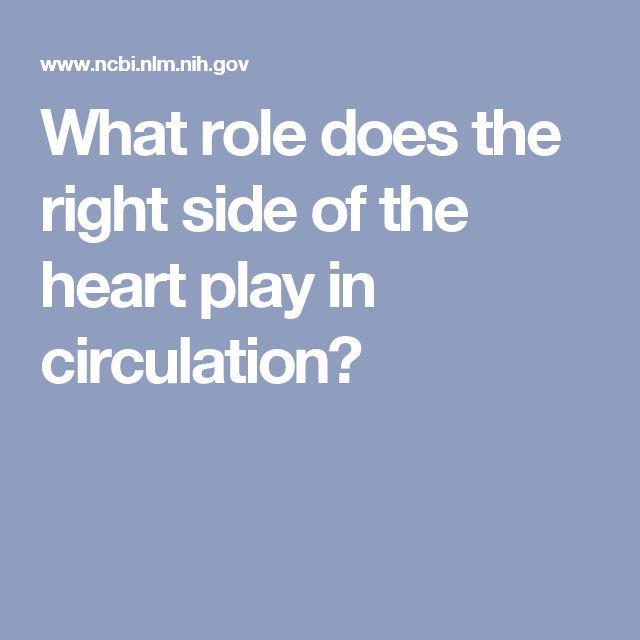 What role does the right side of the heart play in circulation?