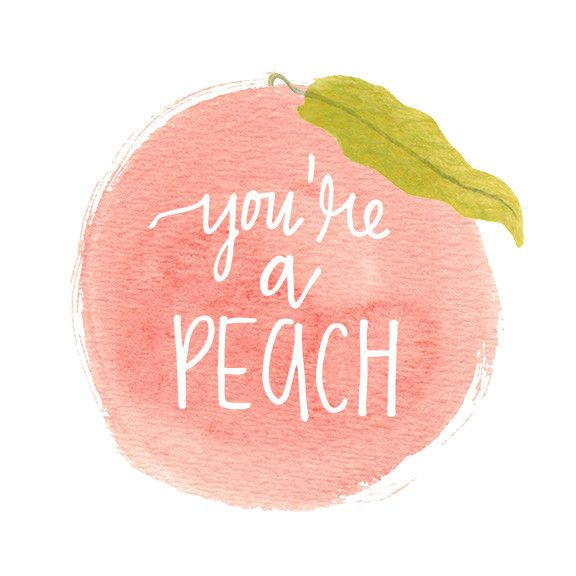 You're a Peach Watercolor Thank You Greeting Card by Mari Orr