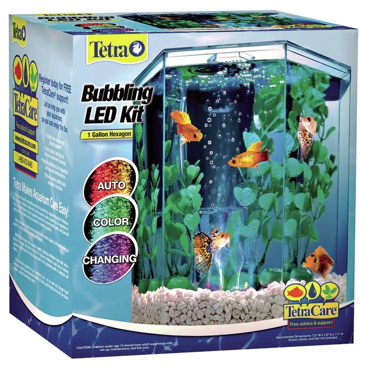 1 Gallon Bubbling Hexagon Aquarium Kit
