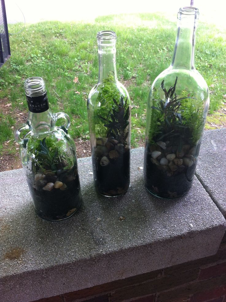 17 best images about reuse my wine bottles on pinterest for How to use wine bottles in the garden