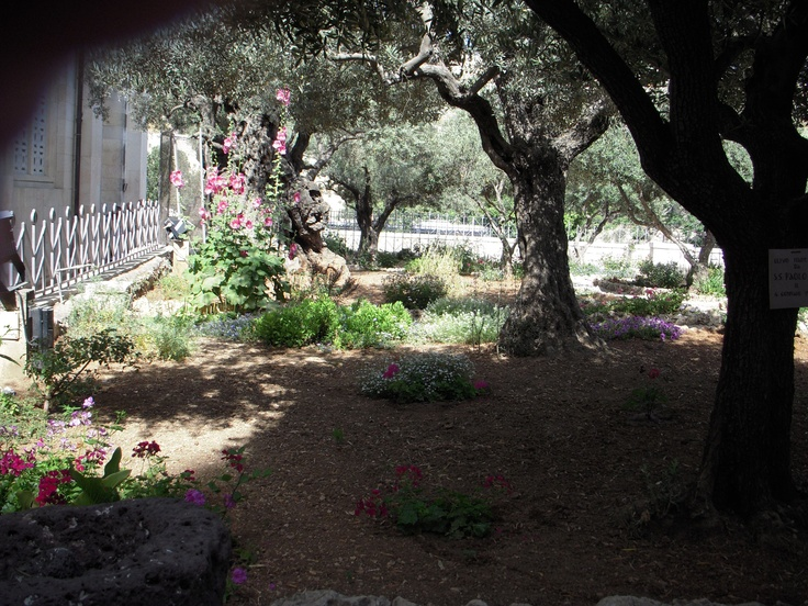 and sometimes we find ourselves in the Garden of Gethsemane