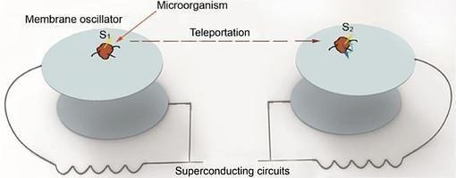 Esquema del método propuesto para teletransportar bacterias