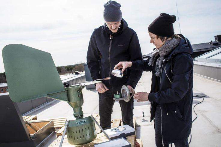 Gotland får egen pollenfälla - Samhälle - Hela Gotland