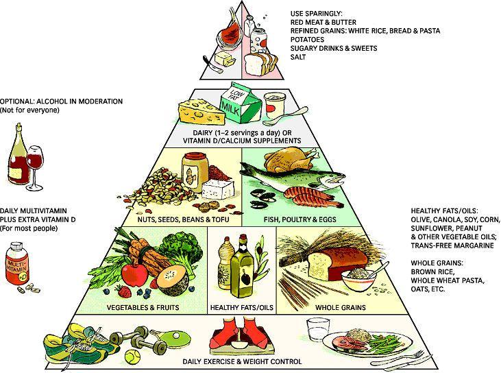 food pyramid explanation   X-files   Healthy eating ... Unhealthy Food Pyramid