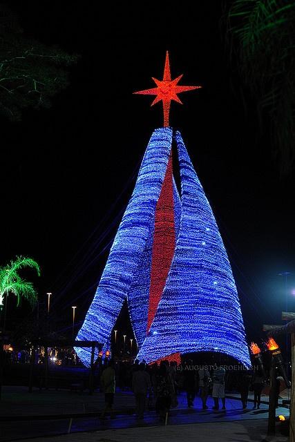 Árvore de Natal de Campo Grande - The Christmas Tree of Campo Grande by Augusto Froehlich, via Flickr
