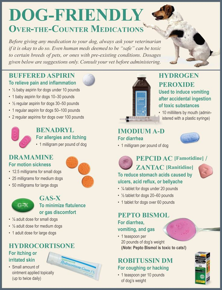 Image result for dog friendly over the counter medications