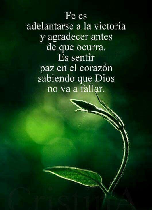 Es, pues, la fe la certeza de lo que se espera, la convicción de lo que no se ve. Hebreos 11:1