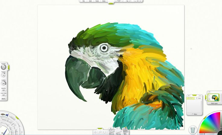 free-drawing-software-artrage-parrot-drawing