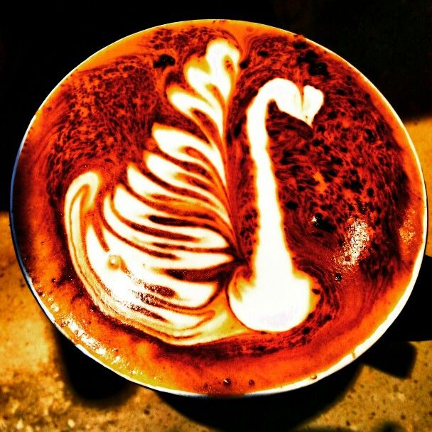 Different look to the traditional swan #latte #latteart #mocha #swan #coffee
