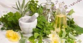 Είναι γνωστά τα βότανα που βοηθούν στην αντιμετώπιση του βήχα , της βρογχίτιδας , του κρυολογήματος , της γρίπης και του άσθματος. Αυτά...