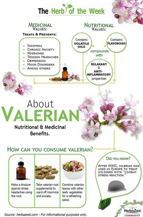 This useful infographic will show you the amazing health benefits and properties that are hidden inside the powerful valerian roots and their volatile oil compounds.