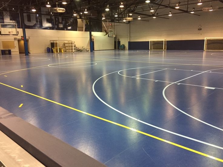 In lieu of the closing of the I-M building, the Sports Coliseum will be open for drop-in activity for the 2015-2016 school year. It features 58 pieces of cardio and strength equipment!