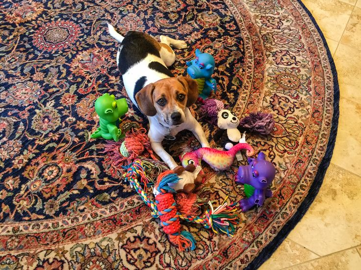 An Island of Toys