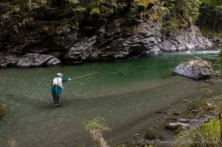 34 best trout images on pinterest fishing trout fishing for Fly fishing new zealand