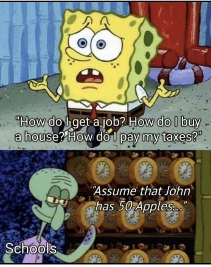 Education System Spongebob Funny Stupid Funny Memes Funny Memes