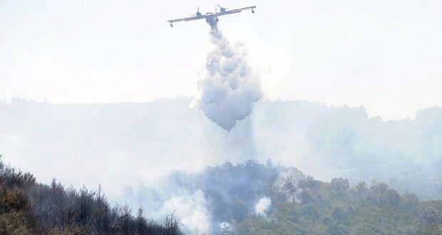 İzmir'de orman yangını |