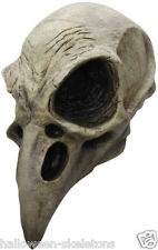 Raven Skull Latex Halloween Mask- You Become The Halloween Prop