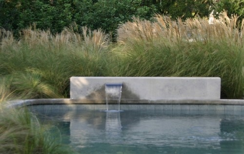 Simply Low Wall Water Feature with Pennisetum on Background | David Rolston