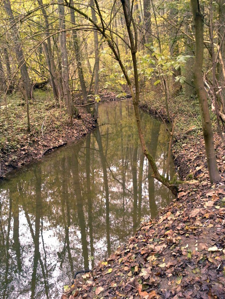 Krásná podzimní místa po celé délce trati