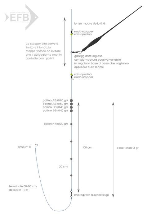 Montatura con galleggiante inglese scorrevole | Elba Fishing Blog