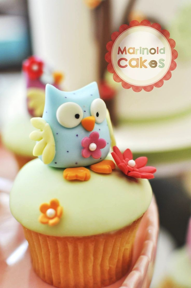 Owl Cake and Cupcake - 8 inch round Mango-Vanilla cake filled with buttercream, and covered in ganache and fondant.
