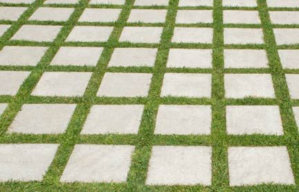 grass and cement driveway - Google Search