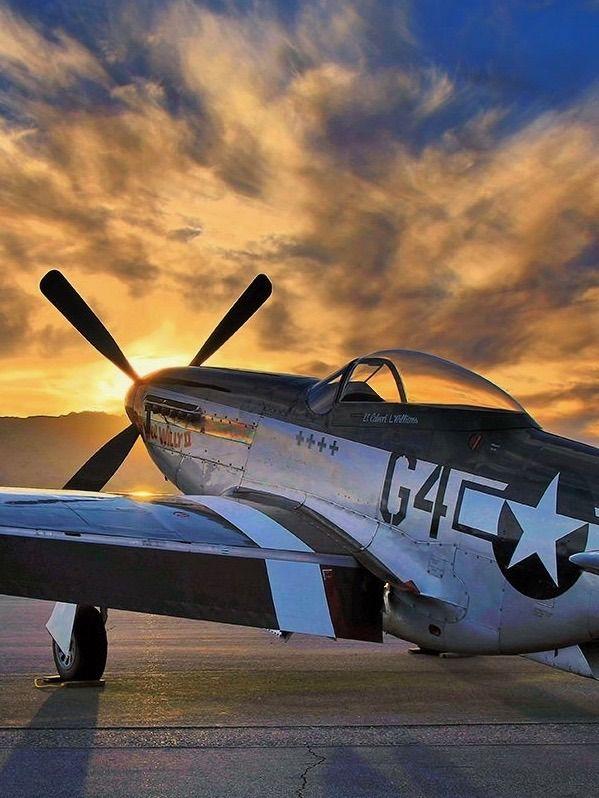 "utwo: "" Mustang P51 © scott plummer """