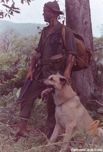 """The National Archives Lance Corporal Ralph McWilliams stands with his scout dog """"Major"""".  Photo taken: November 1967  The U.S. Army employed tracker dogs during the Vietnam War to trace the scent of enemy forces. Combat Tracker Teams (CTT) typically consisted of a Labrador retriever and five men: the team leader, a visual tracker, a radio-telephone operator, a cover man and the dog handler."""