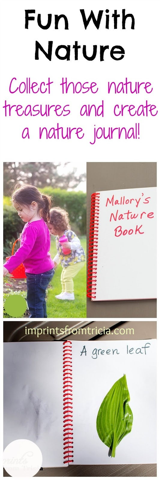 Tips for Creating Nature Journals with Kids.