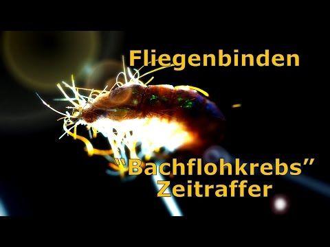 Fly Tying Gammarus - YouTube