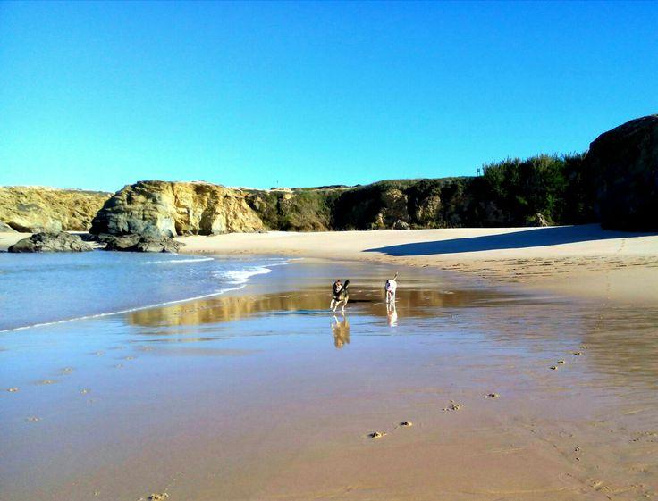 #dogs#beach#portocovo#portugal#southeastportugal