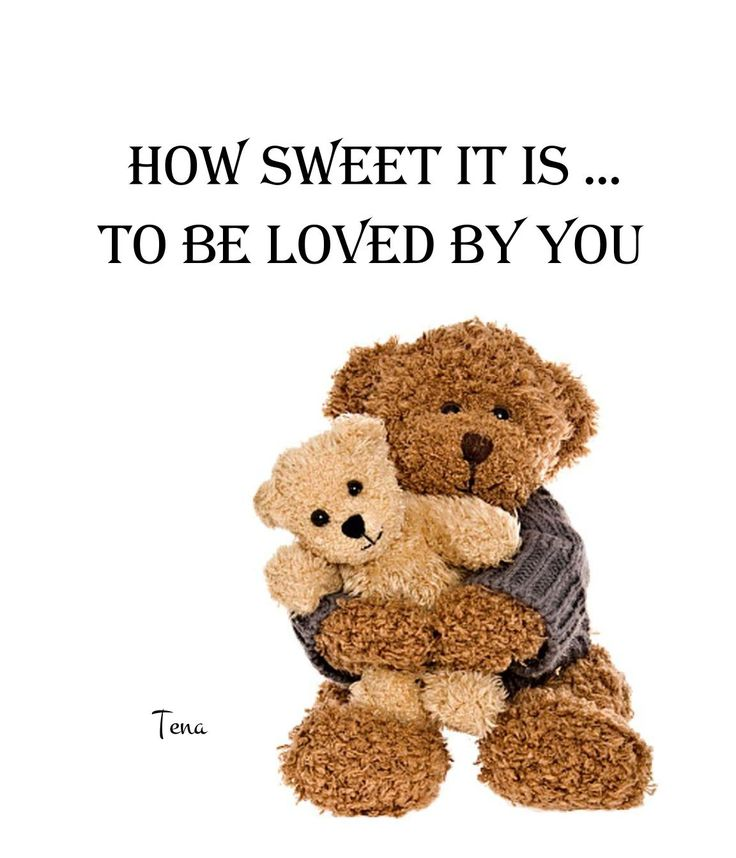 Love Quotes With Teddy Bear Images: 17 Best Images About Beloved Teddy ( & Friends) On