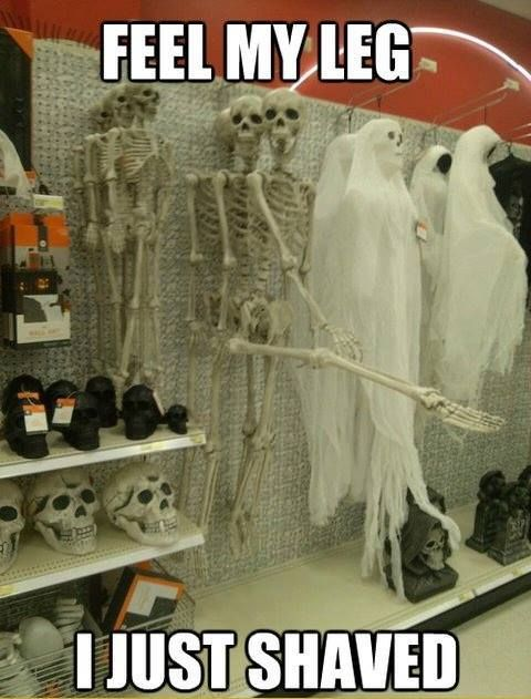 hahaha girls i think we've all done this..feel my leg i just shaved, lol skeleton halloween cool funny
