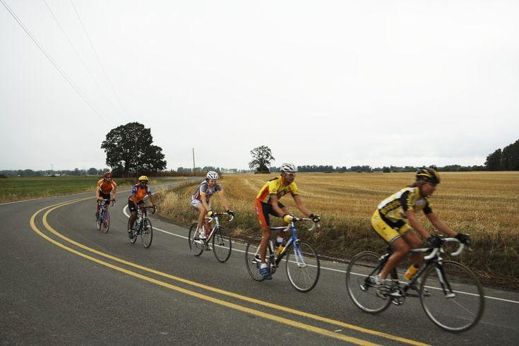 Los mejores asientos para bicicletas de carrera. Una de las partes más importante de una bicicleta es el punto de contacto. Tu asiento es todo lo único que te protege de la vibración de una bicicleta en velocidad, así que conseguir el mejor asiento debe ser una prioridad para aprovechar al máximo ...