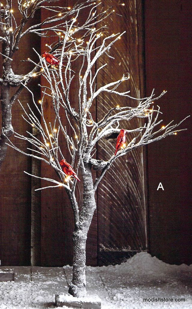 Roost Snowy Willow Trees Willow Tree Trees And Diy Projects
