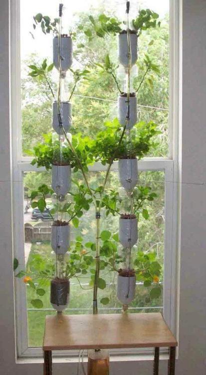 jardim hidrop nico de janela feito com garrafas pet ideias de reciclagem recycling ideas. Black Bedroom Furniture Sets. Home Design Ideas