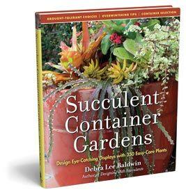 Succulent Container Gardens by Debra Lee Baldwin Baldwin is the queen of writers on succulents