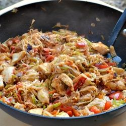 A low-fat, low sodium take on szechaun chicken and lo-mein noodles!