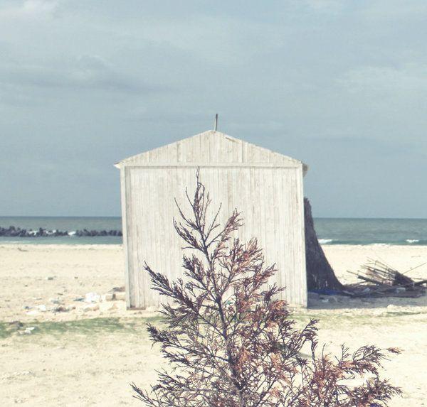blue days by Renata Elbatat
