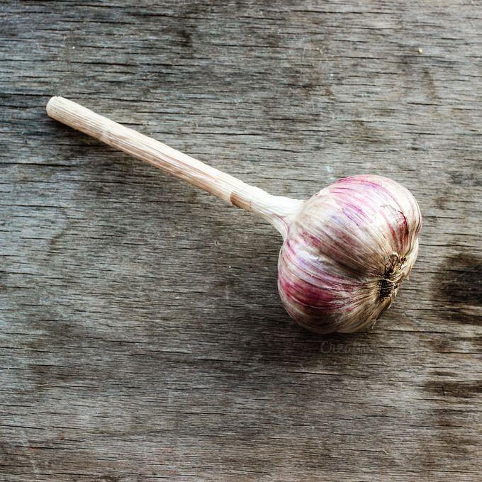 Check out Garlic by IlirisDesign on Creative Market