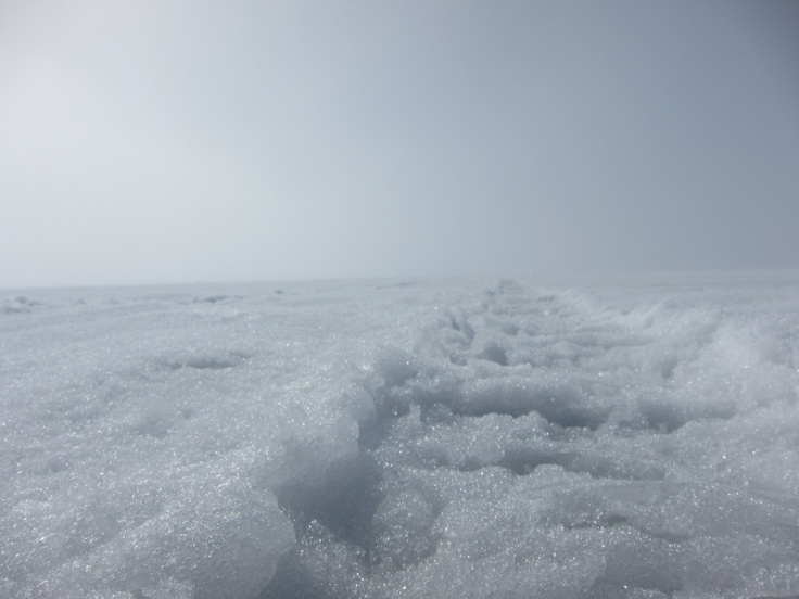 1000 ideas about lake simcoe ice fishing on pinterest for Lake simcoe fishing report
