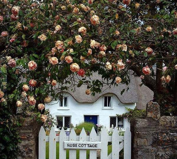 cottage gardens ideas dream cottage gardens stone fence wooden gate country…
