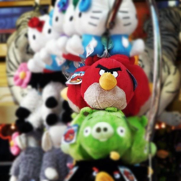 Angry Bird :-): Michaela Werner, Michaela Welt, Michaela W Michaela