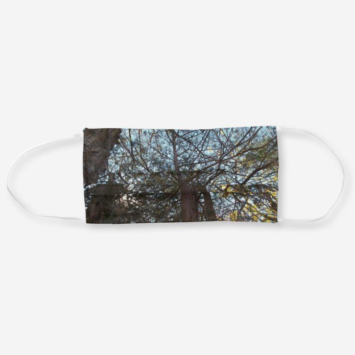 Up Through The Branches Cloth Face Mask Zazzle Com In 2020 Face Mask Mask Face