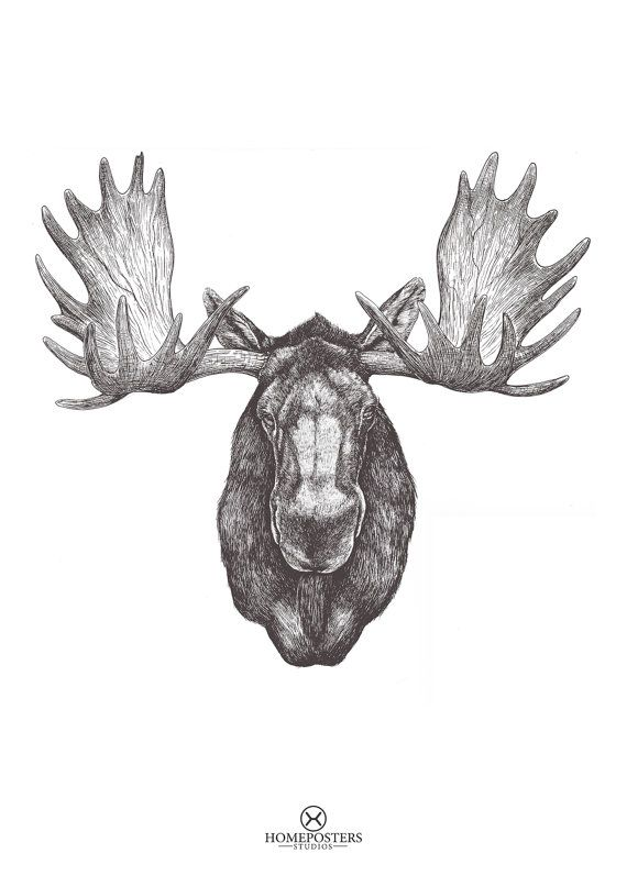 Moose head Printable / Art Print Moose Print Animal par HomePoster