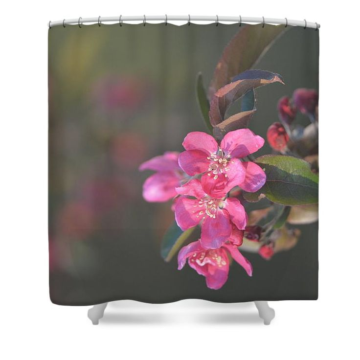 """Spring Blossoms Shower Curtain by Joan D Squared Photography.  This shower curtain is made from 100% polyester fabric and includes 12 holes at the top of the curtain for simple hanging.  The total dimensions of the shower curtain are 71"""" wide x 74"""" tall."""