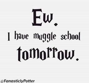6 lustige Harry-Potter-Meme Du wirst nicht glauben, dass du es verpasst hast …
