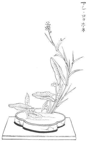 Line Drawings Of Flower Arrangements : Best images about japan japon moribana ikebana on